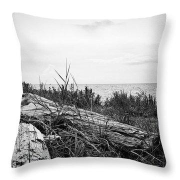 Drift Wood Throw Pillow by Karen Stahlros