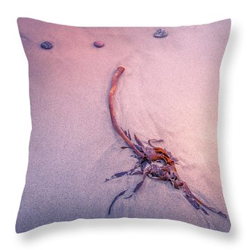 Drifted Throw Pillow