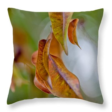 Drifting Away Throw Pillow