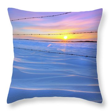 Drifting Away Throw Pillow by Dan Jurak
