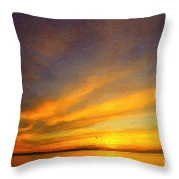 Drifting Throw Pillow by Chris Armytage