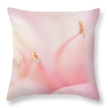 Drifting In A Dream Throw Pillow