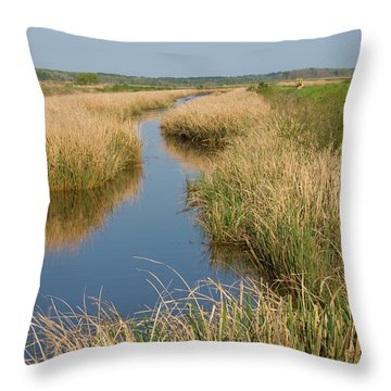 Throw Pillow featuring the photograph Drifting by Margaret Palmer