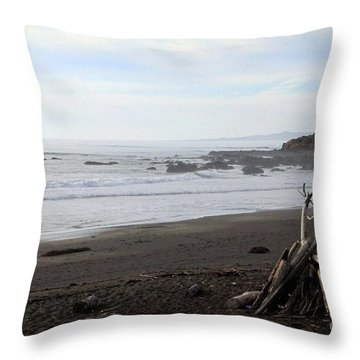 Driftwood And Moonstone Beach Throw Pillow by Linda Woods