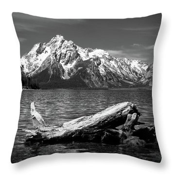 driftwood and Mt. Moran Throw Pillow