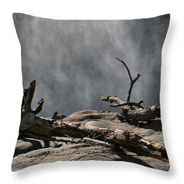 Driftwood Throw Pillow by Andrei Shliakhau