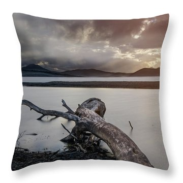 Driftwood At The End Of The World Throw Pillow