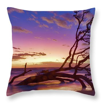 Driftwood Beach 1 Throw Pillow