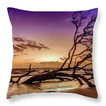 Driftwood Beach 2 Throw Pillow