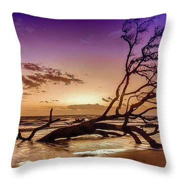 Driftwood Beach 2 Throw Pillow