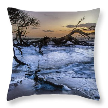 Driftwood Beach 3 Throw Pillow