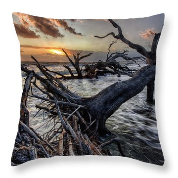 Driftwood Beach 4 Throw Pillow