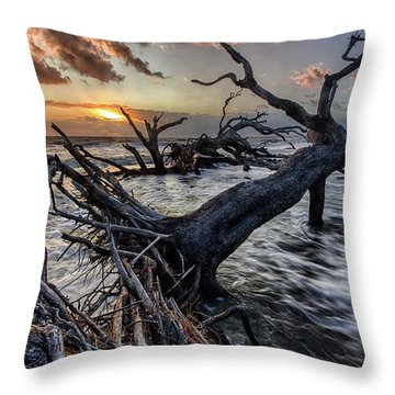 Driftwood Beach 5 Throw Pillow