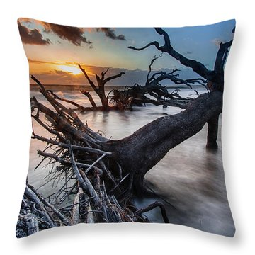 Driftwood Beach 6 Throw Pillow