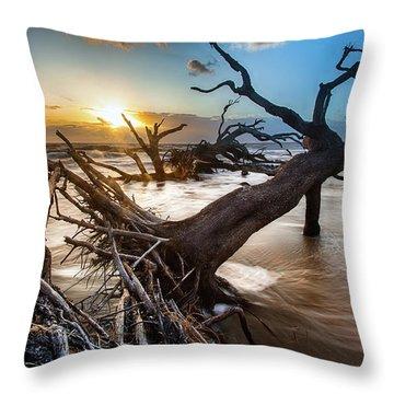 Driftwood Beach 7 Throw Pillow