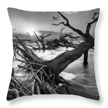 Driftwood Beach 8 Throw Pillow