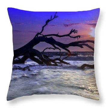 Driftwood Beach 9 Throw Pillow