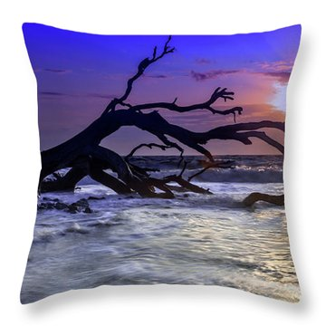 Driftwood Beach 9 Throw Pillow