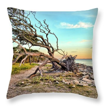 Driftwood Beach Morning 2 Throw Pillow