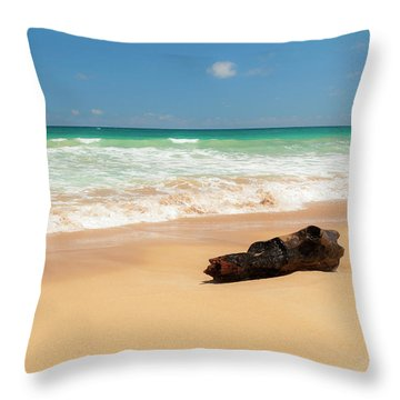 Driftwood Throw Pillow by Brian Harig