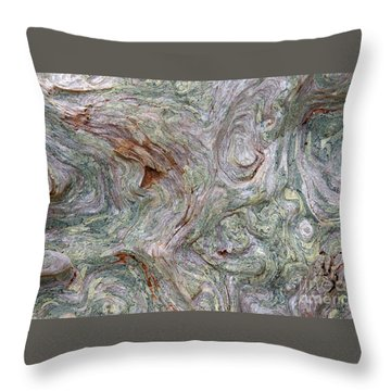 Driftwood Burl Throw Pillow