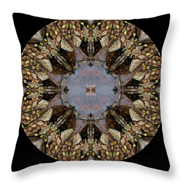 Driftwood Fairies Around A Pond Kaliedoscope Throw Pillow