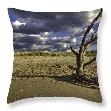 Driftwood II Throw Pillow
