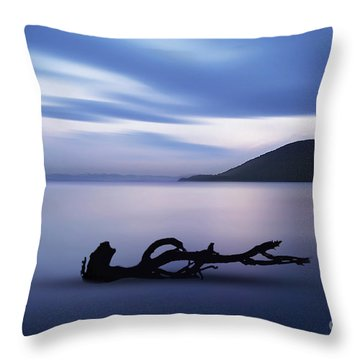 Throw Pillow featuring the photograph Driftwood by Jim  Hatch