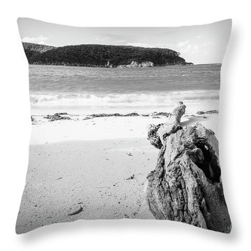 Driftwood On Beach Black And White Throw Pillow