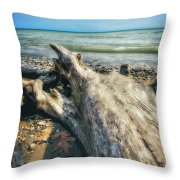 Throw Pillow featuring the photograph Driftwood On Beach - Grant Park - Lake Michigan Shoreline by Jennifer Rondinelli Reilly - Fine Art Photography