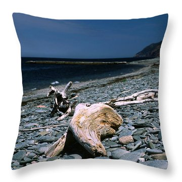 Driftwood On Rocky Beach Throw Pillow by Sally Weigand