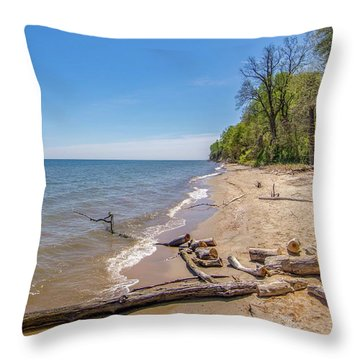 Driftwood On The Beach Throw Pillow