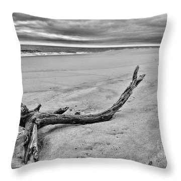 Driftwood On The Beach In Black And White Throw Pillow by Paul Ward
