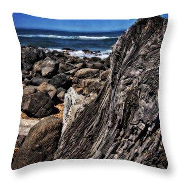 Driftwood Rocks Water Throw Pillow