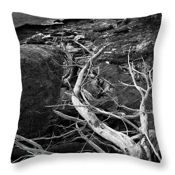 Driftwood Tree, La Verna Preserve, Bristol, Maine  -20999-30003 Throw Pillow