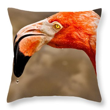 Dripping Flamingo Throw Pillow by Christopher Holmes