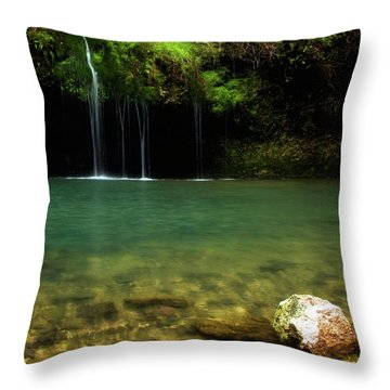Dripping Springs Throw Pillow