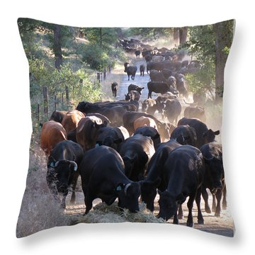 Drive Through Diner Throw Pillow by Diane Bohna