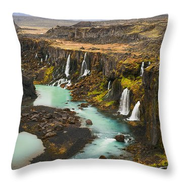 Driven To Tears Throw Pillow