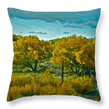 Driving Foliage Throw Pillow by Gwyn Newcombe