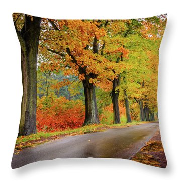 Throw Pillow featuring the photograph Driving On The Autumn Roads by Dmytro Korol