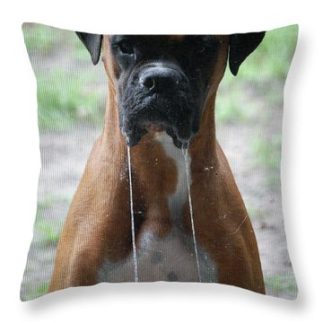Drool To The Extreme Throw Pillow by DigiArt Diaries by Vicky B Fuller