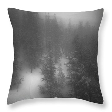 Drop In Throw Pillow