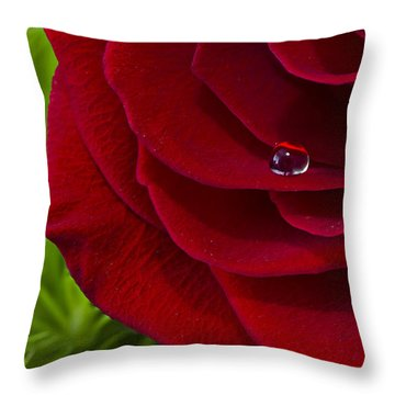 Drop On A Rose Throw Pillow by Marlo Horne