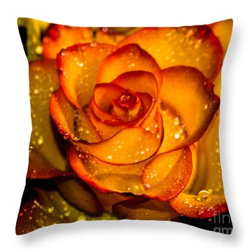 Droplet Rose Throw Pillow