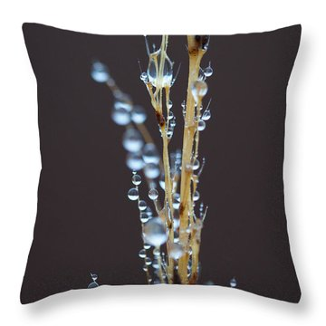 Droplets For Days Throw Pillow