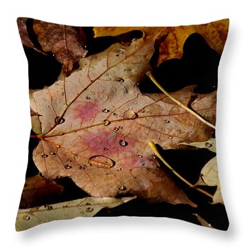 Throw Pillow featuring the photograph Droplets On Fallen Leaves by Doris Potter