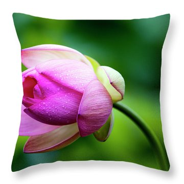 Throw Pillow featuring the photograph Droplets On Lotus by Edward Kreis