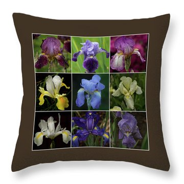 Drops Of Iris -- A Collage Throw Pillow by Richard Cummings