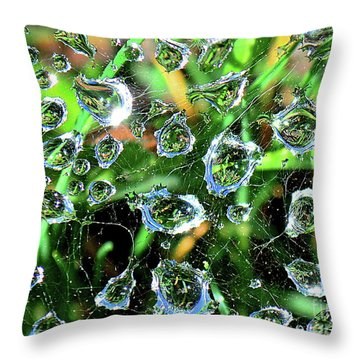 Drops Of Reflection Throw Pillow